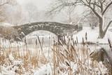 Blizzard in Central Park. Gapstow bridge in Manhattan