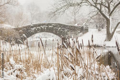Foto op Aluminium New York Blizzard in Central Park. Gapstow bridge in Manhattan