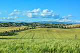 scenic views of the hills of Siena in Tuscany Italy, in spring