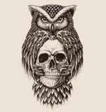 Elaborate drawing of Owl holding skull - 141433028