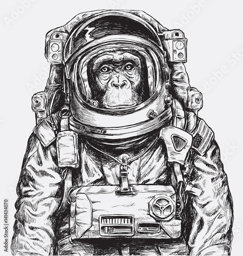 Hand Drawn Monkey Astronaut Vector - 141434070