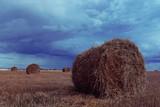 landscape haystacks in a field of autumn village