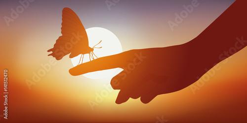 motyl - ręka - słodycz - piękno - zachód słońca