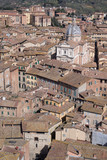 Rooftops of Siena