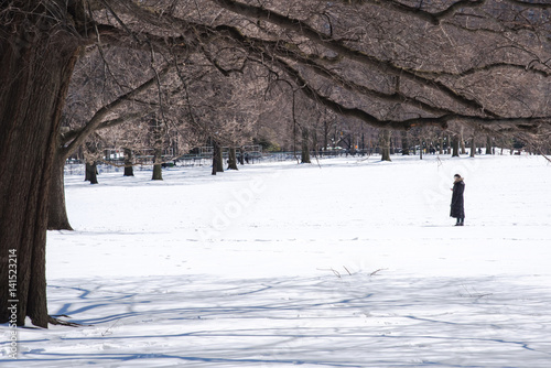 Poster Woman checking her cellphone in the Central Park covered with snow after winter