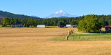 View of the farm, with Mount Adams in the background.