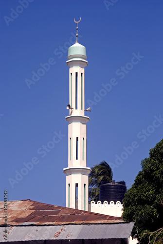 Zanzibar Minaret, Stone Town, Zanzibar, Tanzania