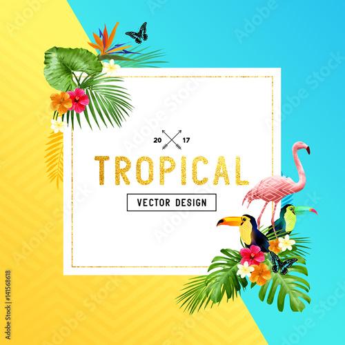 tropikalny projekt granicy