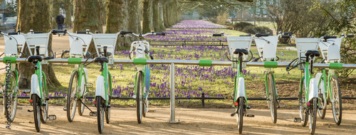 City bike rental station in spring park - 141614251