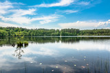 Sunny summer landscape of lake in the forest