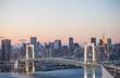 Rainbow bridge sunset with tokyo tower