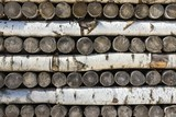 texture of wooden logs and firewood