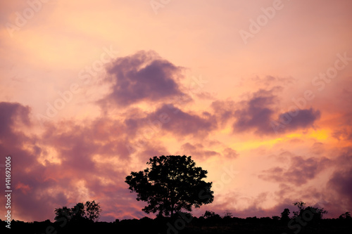 Silhouette Sunset soft focus Poster