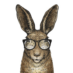 Cute Easter bunny with glasses. Cartoon vector illustration