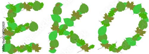 Eko liście