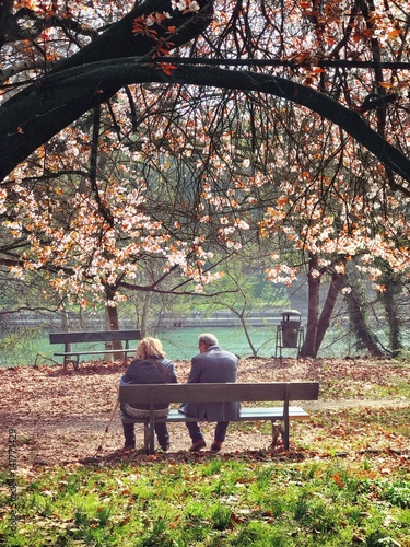 Zdjęcia na płótnie, fototapety, obrazy : anziani al parco