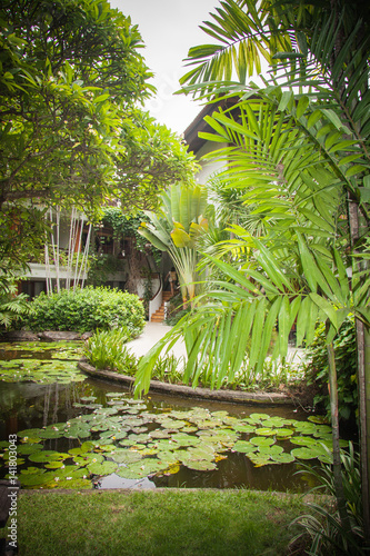 Fototapeta idyllic villa and paths in tropical junglein Bali, Indonesia