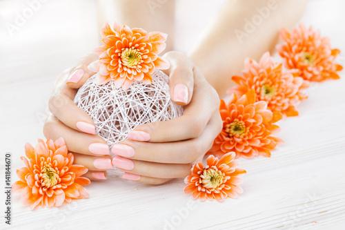 pink manicure with orange chrysanthemum flowers. spa