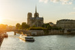 Notre Dame de Paris with cruise ship on Seine river in Paris, France