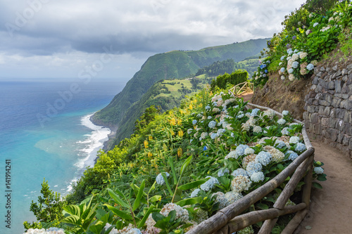 Fotobehang Hydrangea Costal path with Hydrangeas, Sao Miguel, Azores, Portugal