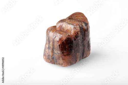 Polished stone chiastolite on a white background. Poster