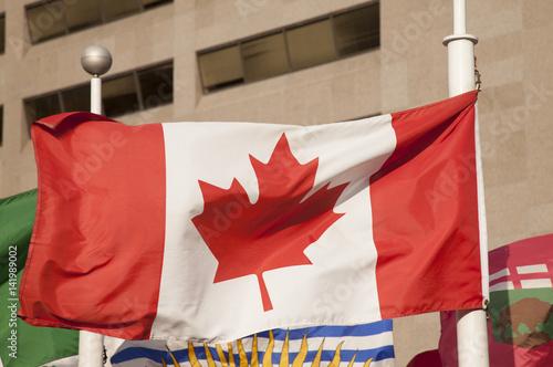 Stampa su Tela Canada flag blowing in Toronto