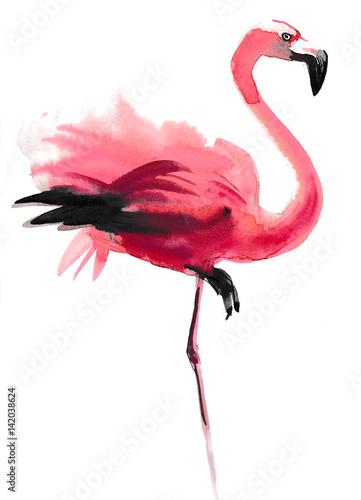 Watercolor flamingo - 142038624