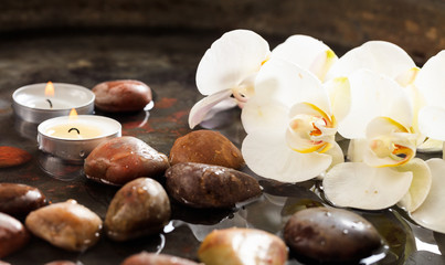 Orchids and pebbles in water background