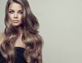 Fototapety Brunette  girl with long  and  volume shiny wavy hair .  Beautiful woman model with curly hairstyle .