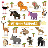 African Animals cartoon on white background with animal name, Vector illustration. Set 1. - 142174852