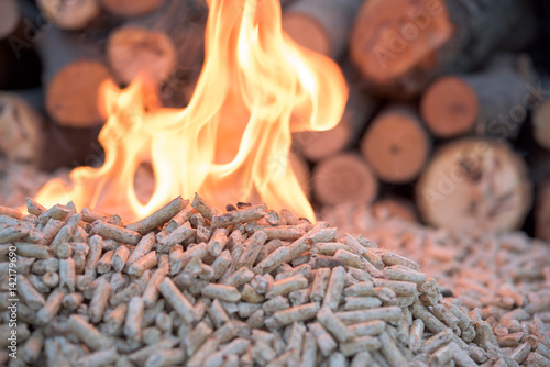 woods and wooden pellets - 142179690