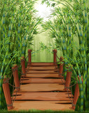 Bamboo forest with wooden bridge © GraphicsRF