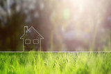 Conceptual eco home healthy living copy space background with blurred sunny meadow texture. - 142197675