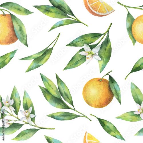 akwarela-owocowy-pomaranczowy-bezszwowy-wzor-kwiaty-i-liscie-odizolowywajacy-na-bialym-tle