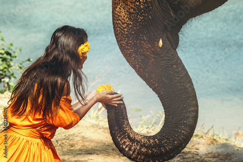 Poster Woman in beautiful orange dress and elephant