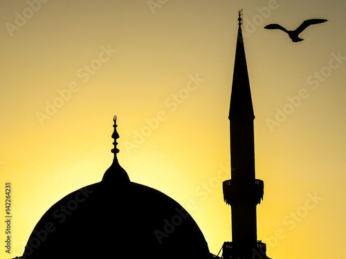 Istanbul, Turkey - February 24, 2017: A seagull over the dome and minarette of a Poster