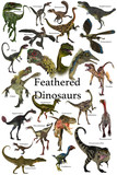 Feathered Dinosaurs - A collection of various feathered dinosaurs from different prehistoric periods of Earth's history.
