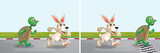 Rabbit and turtle race on the road