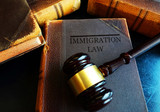 Immigration Law concept - 142349491