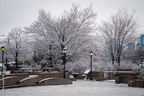 Plexiglas New York Trees covered with snow in a park in Long Island City – New York