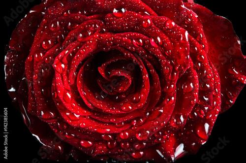 Oko róży