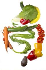 Verdauungstrakt aus Gemüse und Obst