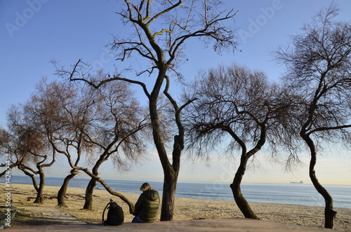 Sahil de ağaçlar Poster