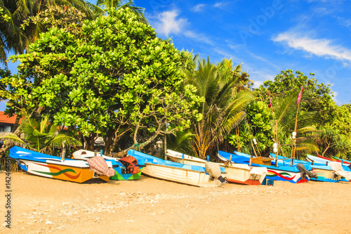 Poster Bright boats on the tropical beach of Bentota, Sri Lanka on a sunny day