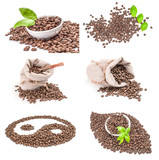 Set of brown coffee beans on a isolated white background