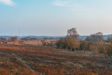 nature landscape in winter with some wind mills in the background