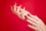 Beautiful manicured woman's hands on red background.