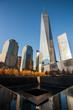 New York city landscapes