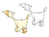 Illustration of a Domestic Geese. Cartoon Character. Coloring Book