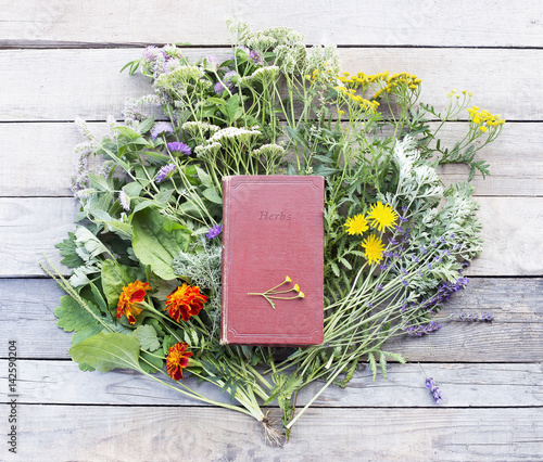 Mix of fresh herbs from garden on an old table. Old book of medicinal herbs